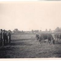 Liskeard Young Farmers Visit